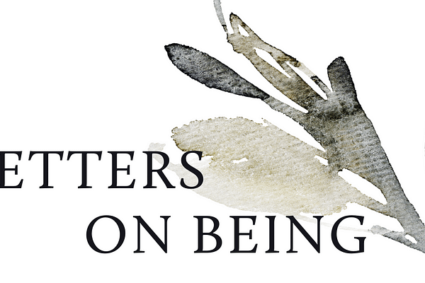 """<p>Letters on Being is a weekly newsletter about health, happiness, and life's myriad nuances. My hope is that reading it will feel like talking with an old friend under the stars at 2 a.m. No matter what we're talking about, it'll be exactly what we need to hear. I say """"we"""" because I want this to be a place of conversation and storytelling. I want it to be a campground where we gather around the fire and tell ghost stories in hushed voices. We're all too complicated and largely irrelevant, but at least we're here together.</p>"""
