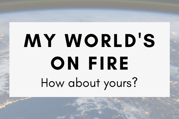 """My World's on Fire is a newsletter about disaster prep, resiliency, and recovery to better understand """"these uncertain times."""""""
